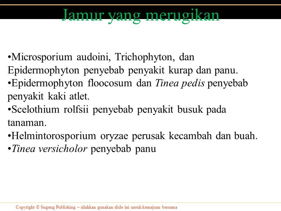 Jamur yang merugikan Copyright © Sugeng Publishing – silahkan gunakan slide ini untuk kemajuan bersama Microsporium audoini, Trichophyton, dan Epiderm
