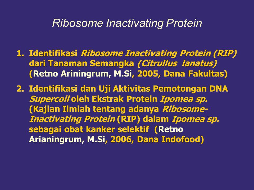 1.Eksplorasi Senyawa Kimia yang Berkhasiat Sebagai Antihepatotoksis dari Beberapa Spesies Hopea (Dipterocarpaceae) Indonesia (Dr. Sri Atun, Prof. Dr.