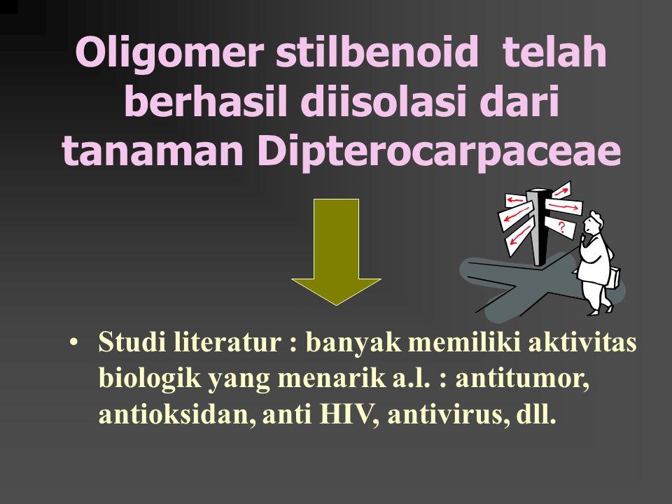 Oligomer stilbenoid telah berhasil diisolasi dari tanaman Dipterocarpaceae Studi literatur : banyak memiliki aktivitas biologik yang menarik a.l.