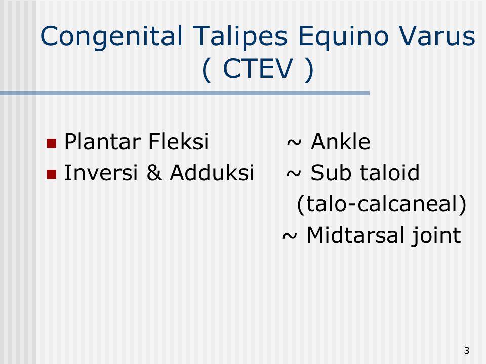 3 Congenital Talipes Equino Varus ( CTEV ) Plantar Fleksi ~ Ankle Inversi & Adduksi ~ Sub taloid (talo-calcaneal) ~ Midtarsal joint