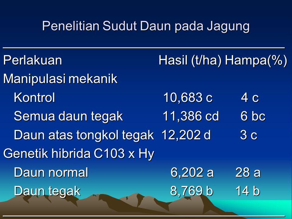 Penelitian Sudut Daun pada Jagung _______________________________________ Perlakuan Hasil (t/ha) Hampa(%) Manipulasi mekanik Kontrol 10,683 c 4 c Kont