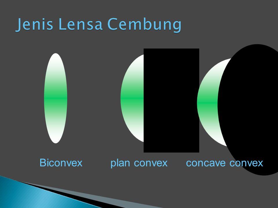 Biconvex plan convex concave convex
