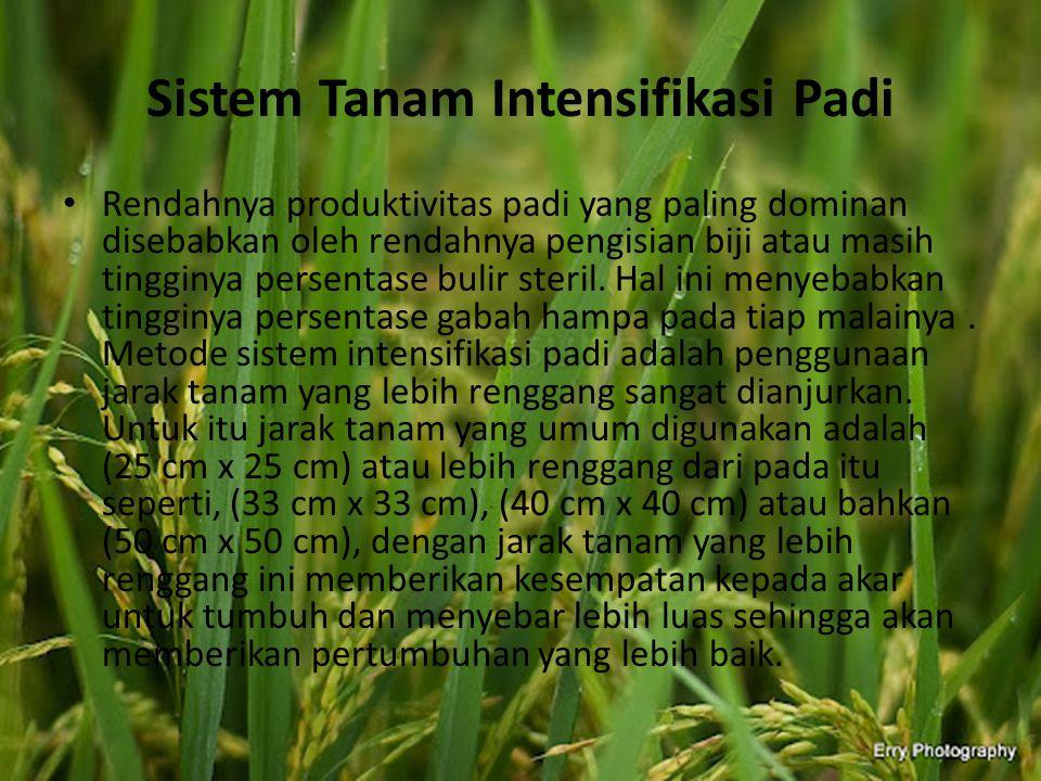 Perkembangan Produktivitas Padi di Indonesia Padi merupakan komoditas strategis yang mendapat prioritas penanganan dalam pembangunan pertanian.