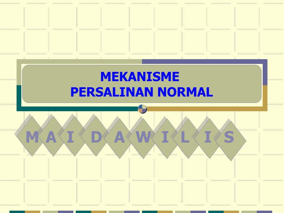 MAIDAWILIS MEKANISME PERSALINAN NORMAL