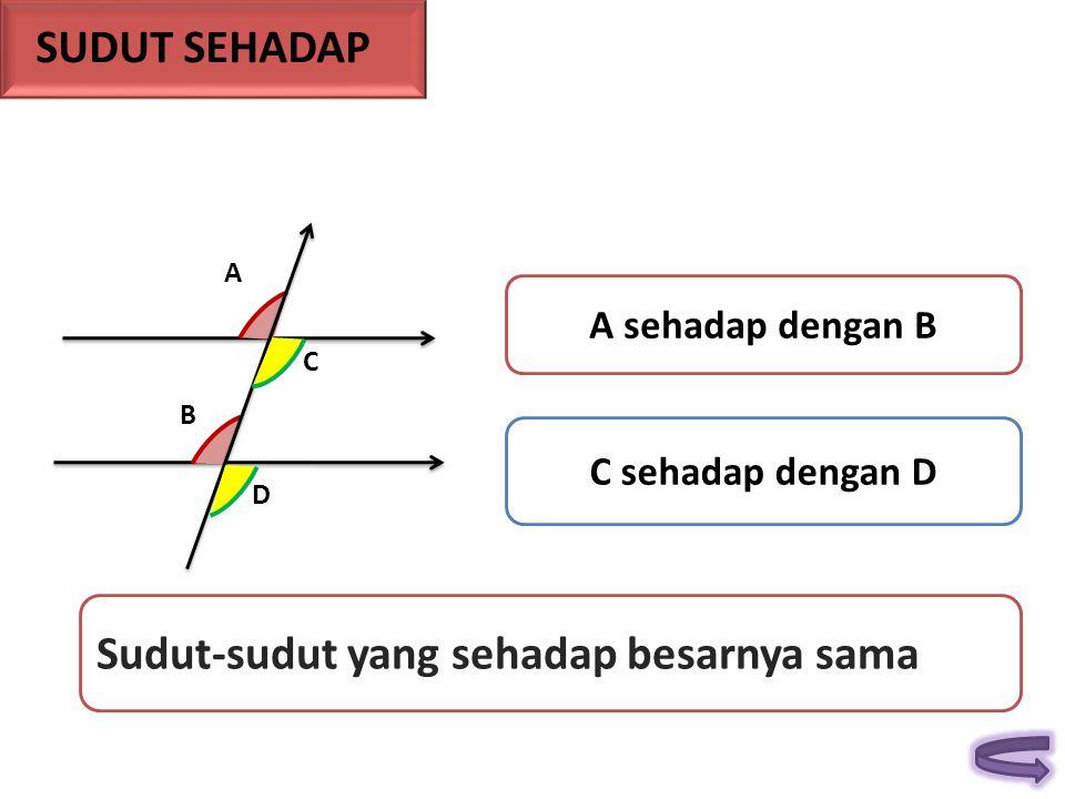 A B C D A sehadap dengan B C sehadap dengan D Sudut-sudut yang sehadap besarnya sama SUDUT SEHADAP