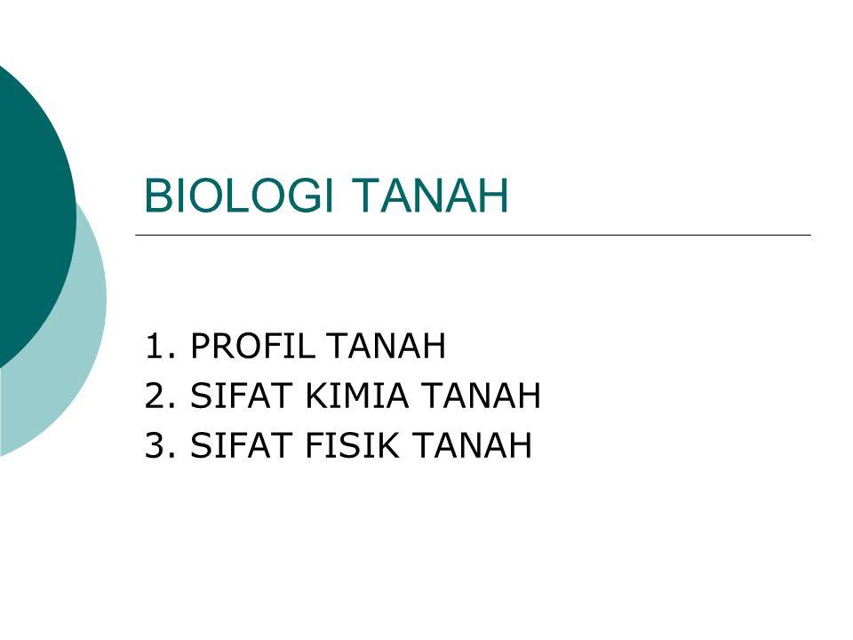 BIOLOGI TANAH 1. PROFIL TANAH 2. SIFAT KIMIA TANAH 3. SIFAT FISIK TANAH