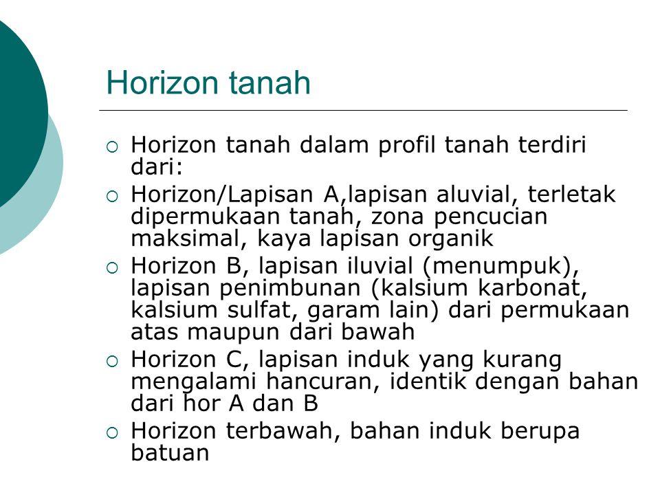 Horizon tanah  Horizon tanah dalam profil tanah terdiri dari:  Horizon/Lapisan A,lapisan aluvial, terletak dipermukaan tanah, zona pencucian maksima