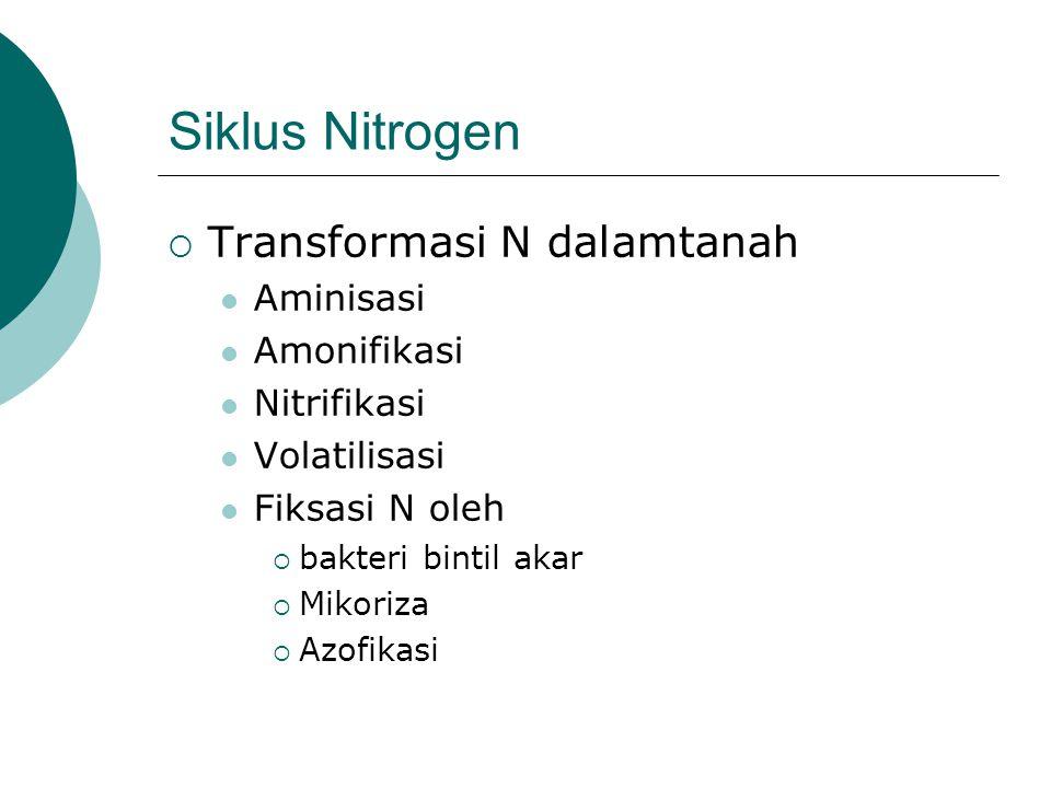 Siklus Nitrogen  Transformasi N dalamtanah Aminisasi Amonifikasi Nitrifikasi Volatilisasi Fiksasi N oleh  bakteri bintil akar  Mikoriza  Azofikasi
