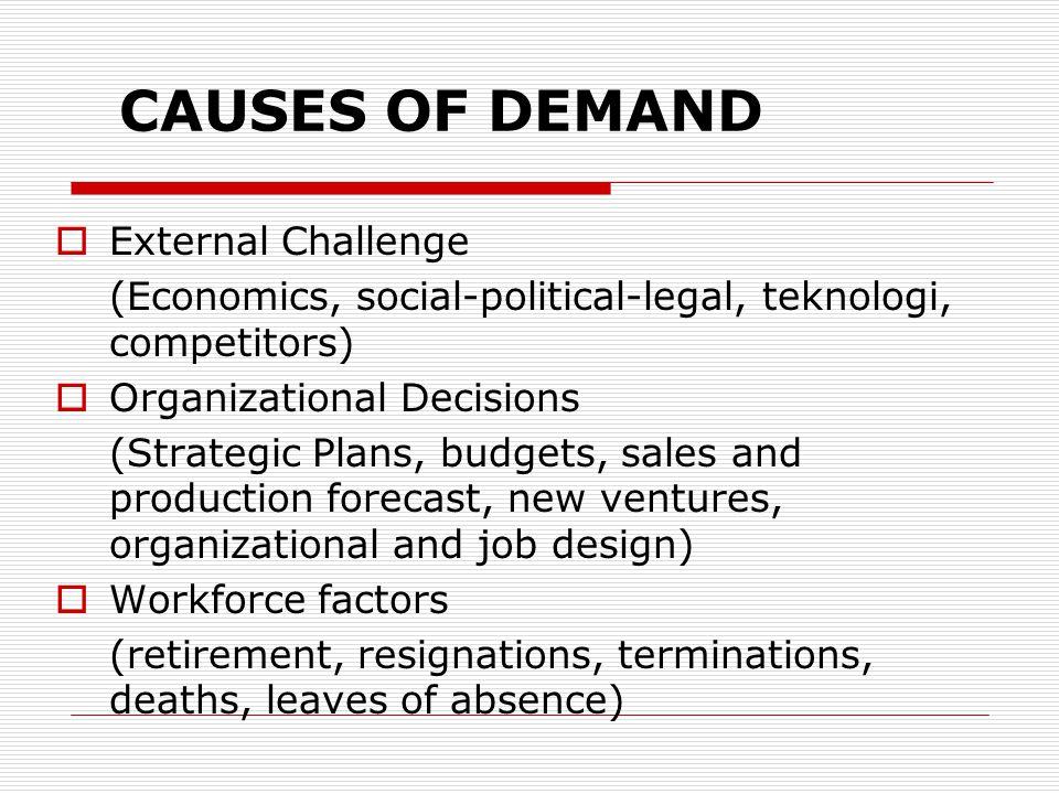 CAUSES OF DEMAND  External Challenge (Economics, social-political-legal, teknologi, competitors)  Organizational Decisions (Strategic Plans, budgets