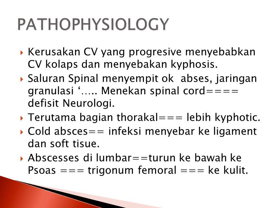  Kerusakan CV yang progresive menyebabkan CV kolaps dan menyebakan kyphosis.  Saluran Spinal menyempit ok abses, jaringan granulasi '….. Menekan spi