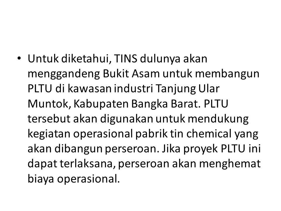Untuk diketahui, TINS dulunya akan menggandeng Bukit Asam untuk membangun PLTU di kawasan industri Tanjung Ular Muntok, Kabupaten Bangka Barat. PLTU t