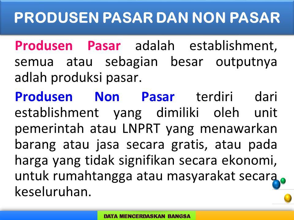 Produsen Pasar adalah establishment, semua atau sebagian besar outputnya adlah produksi pasar. Produsen Non Pasar terdiri dari establishment yang dimi