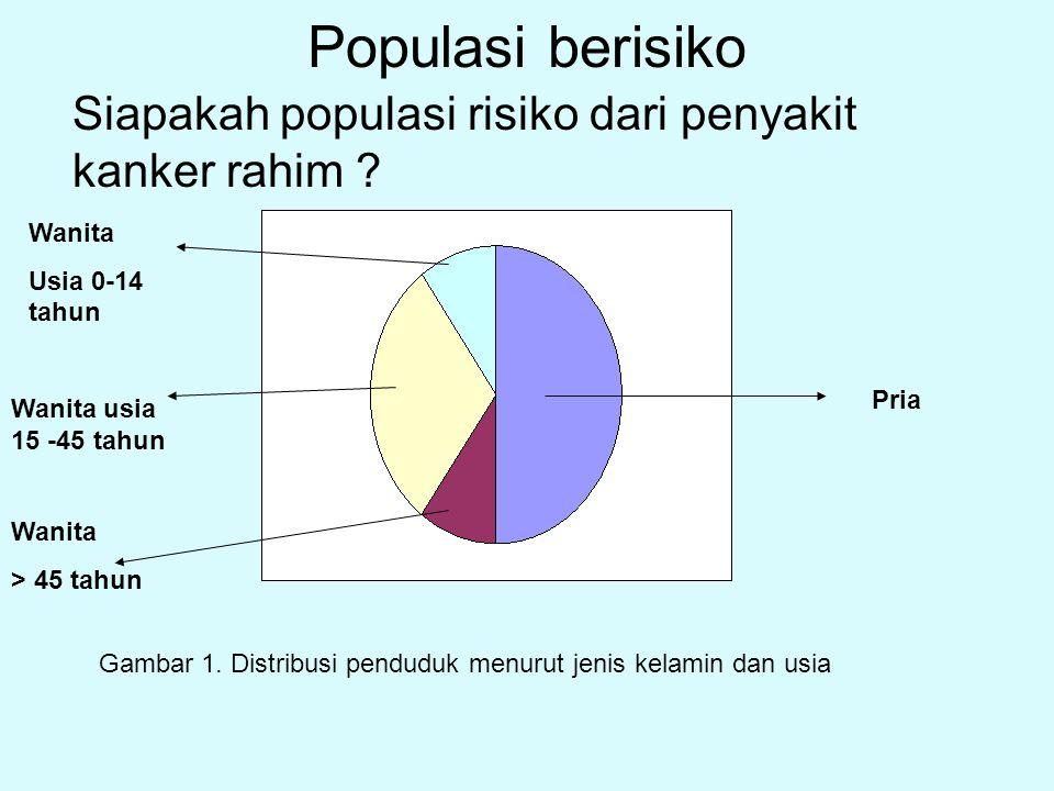 Populasi berisiko Pria Wanita Usia 0-14 tahun Wanita usia 15 -45 tahun Wanita > 45 tahun Gambar 1. Distribusi penduduk menurut jenis kelamin dan usia