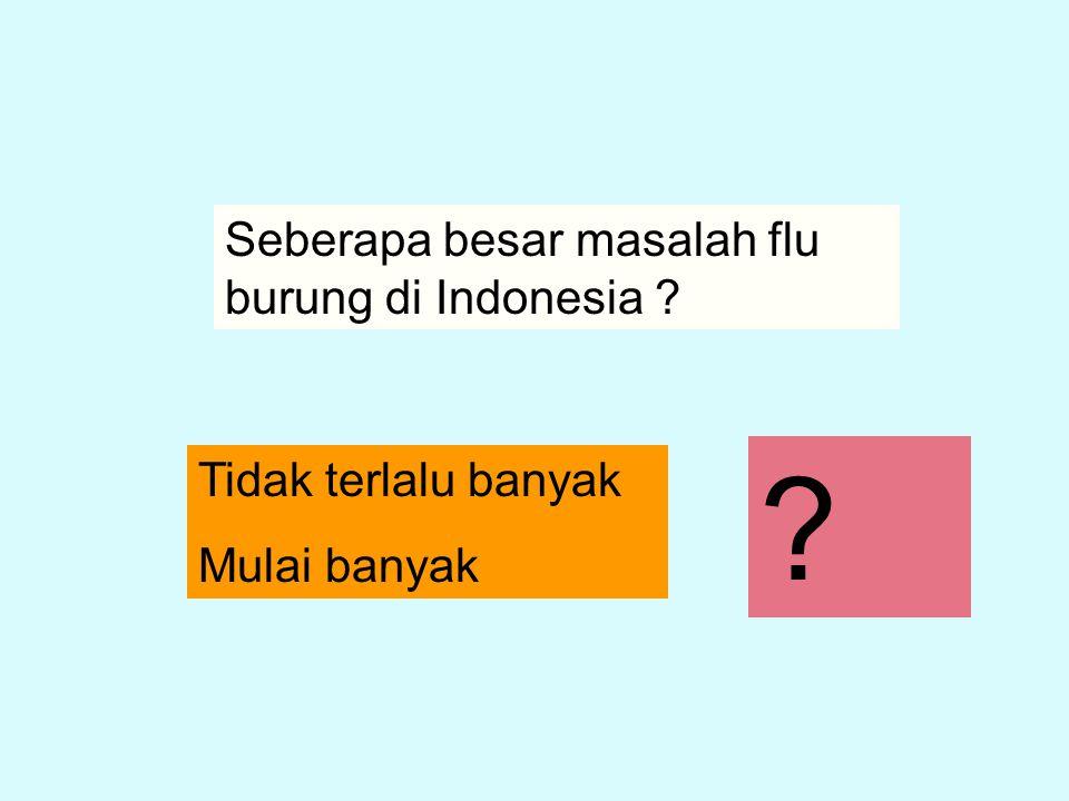 Seberapa besar masalah flu burung di Indonesia ? Tidak terlalu banyak Mulai banyak ?