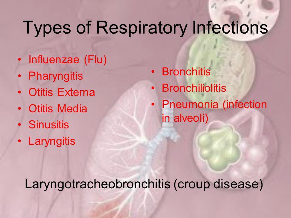 EPIDEMIOLOGI Karakteristik responden pneumonia serupa dengan karakteristik responden ISPA, kecuali pada kelompok umur ≥55 tahun (>3%) pneumonia lebih tinggi.