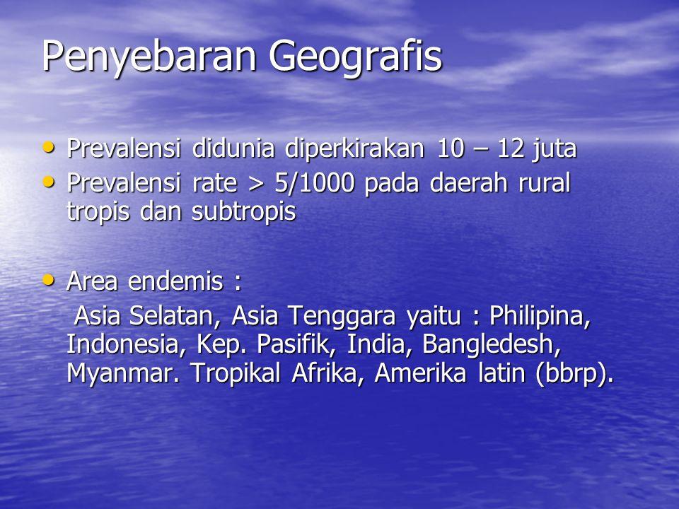 Penyebaran Geografis Prevalensi didunia diperkirakan 10 – 12 juta Prevalensi didunia diperkirakan 10 – 12 juta Prevalensi rate > 5/1000 pada daerah rural tropis dan subtropis Prevalensi rate > 5/1000 pada daerah rural tropis dan subtropis Area endemis : Area endemis : Asia Selatan, Asia Tenggara yaitu : Philipina, Indonesia, Kep.