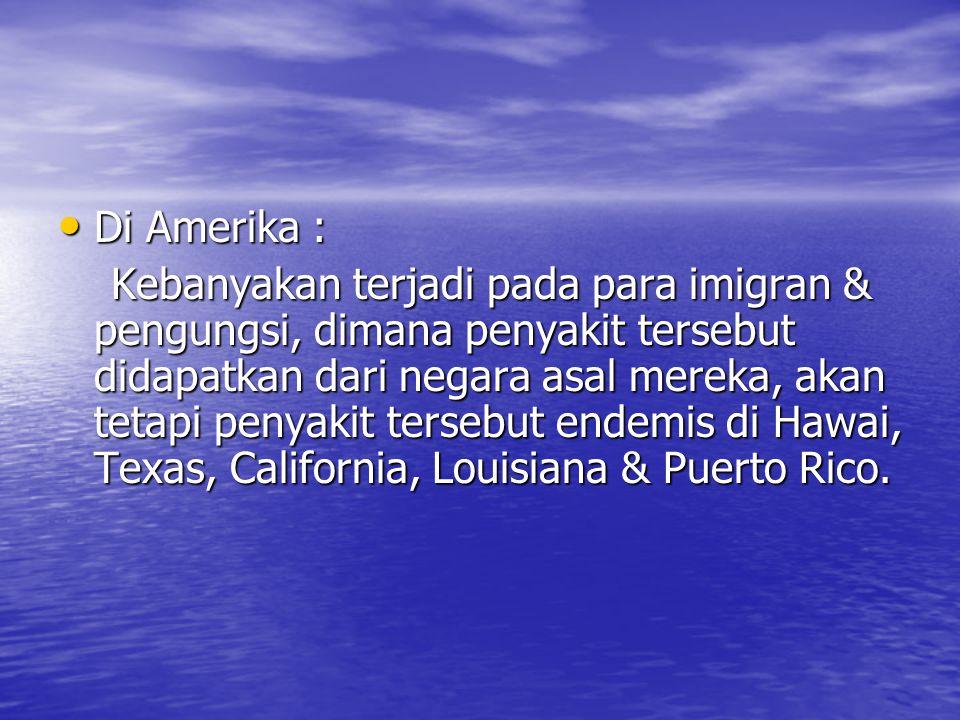 Di Amerika : Di Amerika : Kebanyakan terjadi pada para imigran & pengungsi, dimana penyakit tersebut didapatkan dari negara asal mereka, akan tetapi penyakit tersebut endemis di Hawai, Texas, California, Louisiana & Puerto Rico.