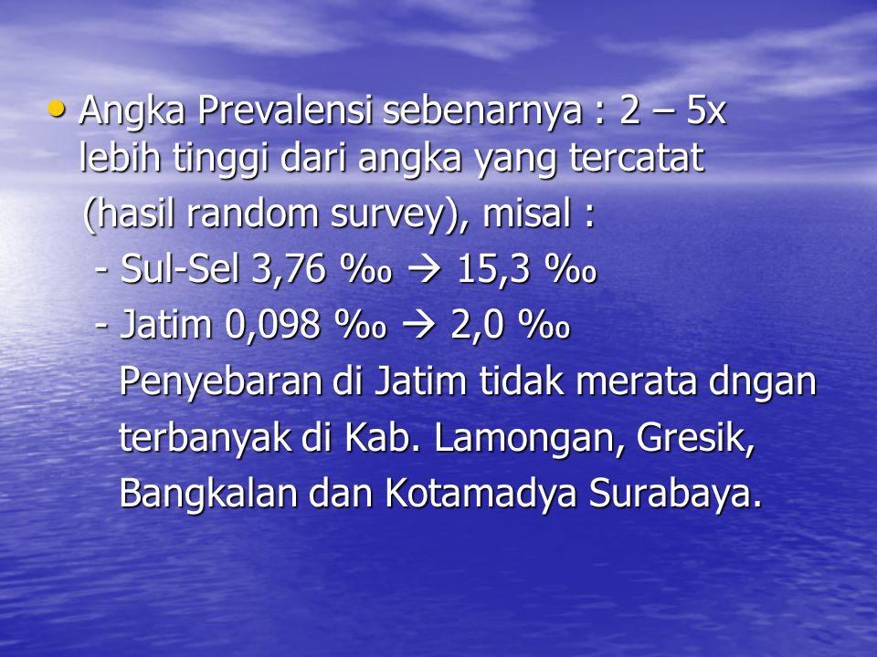 Angka Prevalensi sebenarnya : 2 – 5x lebih tinggi dari angka yang tercatat Angka Prevalensi sebenarnya : 2 – 5x lebih tinggi dari angka yang tercatat (hasil random survey), misal : (hasil random survey), misal : - Sul-Sel 3,76 ‰  15,3 ‰ - Sul-Sel 3,76 ‰  15,3 ‰ - Jatim 0,098 ‰  2,0 ‰ - Jatim 0,098 ‰  2,0 ‰ Penyebaran di Jatim tidak merata dngan Penyebaran di Jatim tidak merata dngan terbanyak di Kab.