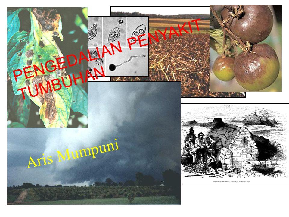 Eksklusi patogen Perawatan bahan tanaman. Karantina tumbuhan. Pembasmian serangga vektor.