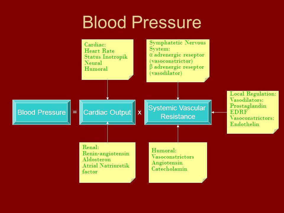 Blood Pressure Systemic Vascular Resistance Cardiac Output Cardiac: Heart Rate Status Inotropik Neural Humoral Symphatetic Nervous System: α adrenergic reseptor (vasoconstrictor) β adrenergic reseptor (vasodilator) Humoral: Vasoconstrictors Angiotensin Catecholamin Renal: Renin-angiotensin Aldosteron Atrial Natriuretik factor Local Regulation: Vasodilators: Prostaglandin EDRF Vasoconstrictors: Endothelin =x