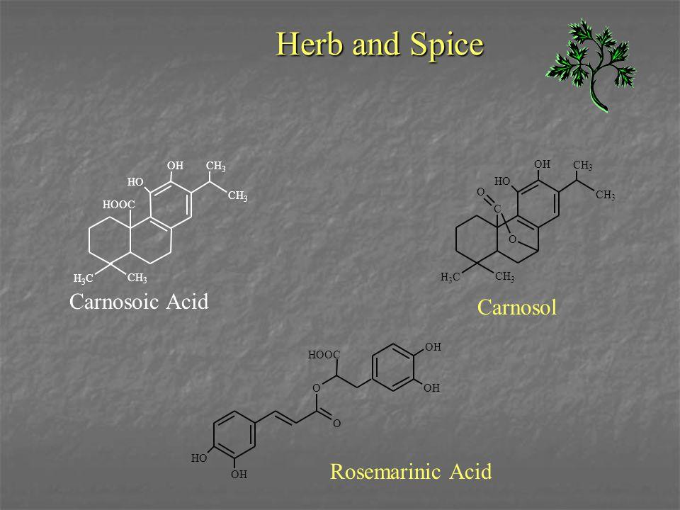 Herb and Spice CH 3 HO OH CH 3 CH 3 H 3 C HOOC Carnosoic Acid C O H 3 C CH 3 HO OH CH 3 CH 3 O Carnosol OH OH HO OH O O HOOC Rosemarinic Acid