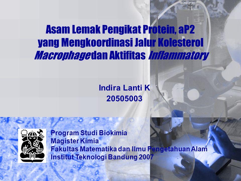 Asam Lemak Pengikat Protein, aP2 yang Mengkoordinasi Jalur Kolesterol Macrophage dan Aktifitas Inflammatory Indira Lanti K 20505003 Program Studi Biok