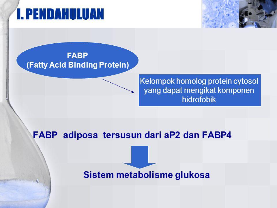 I. PENDAHULUAN FABP adiposa tersusun dari aP2 dan FABP4 Sistem metabolisme glukosa FABP (Fatty Acid Binding Protein) Kelompok homolog protein cytosol