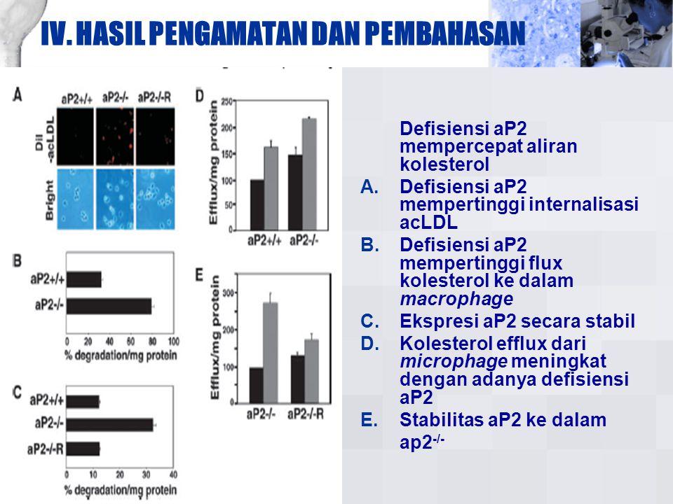 IV. HASIL PENGAMATAN DAN PEMBAHASAN Defisiensi aP2 mempercepat aliran kolesterol A. Defisiensi aP2 mempertinggi internalisasi acLDL B. Defisiensi aP2