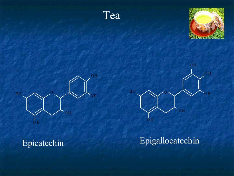 Tea Epicatechin HO OH O OH OH OH HO OH O OH OH OH OH Epigallocatechin