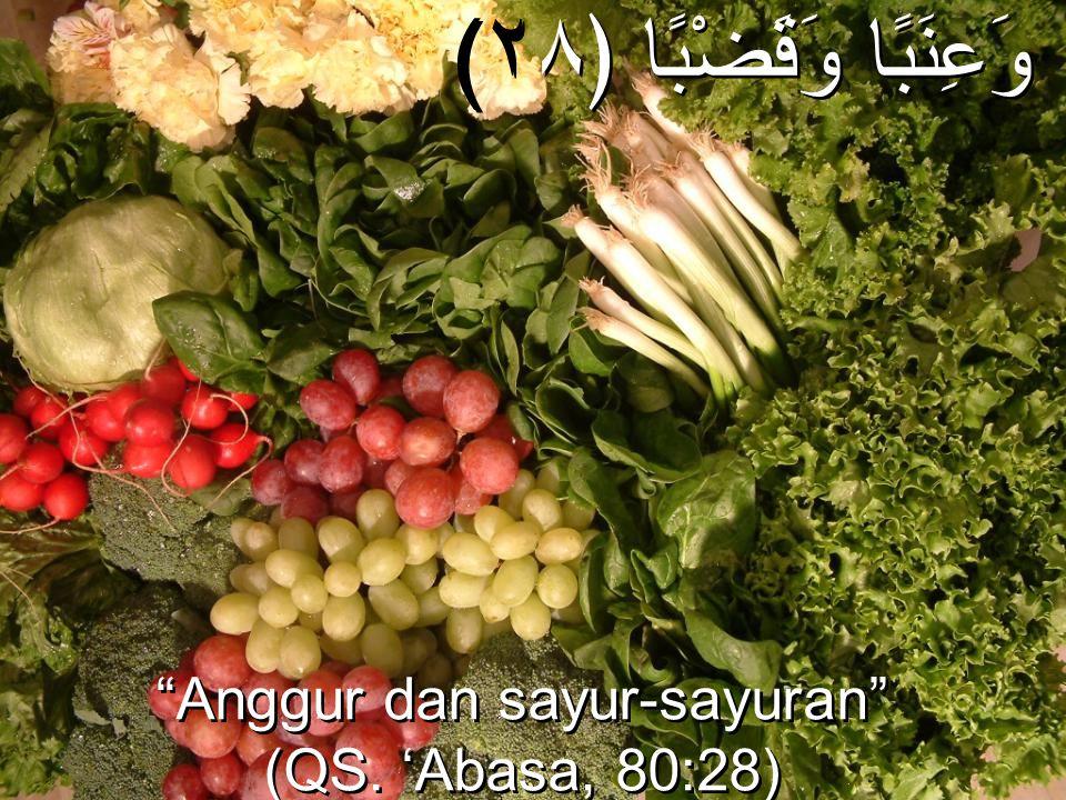 """(وَعِنَبًا وَقَضْبًا ﴿٢٨ """"Anggur dan sayur-sayuran"""" (QS. 'Abasa, 80:28) """"Anggur dan sayur-sayuran"""" (QS. 'Abasa, 80:28)"""