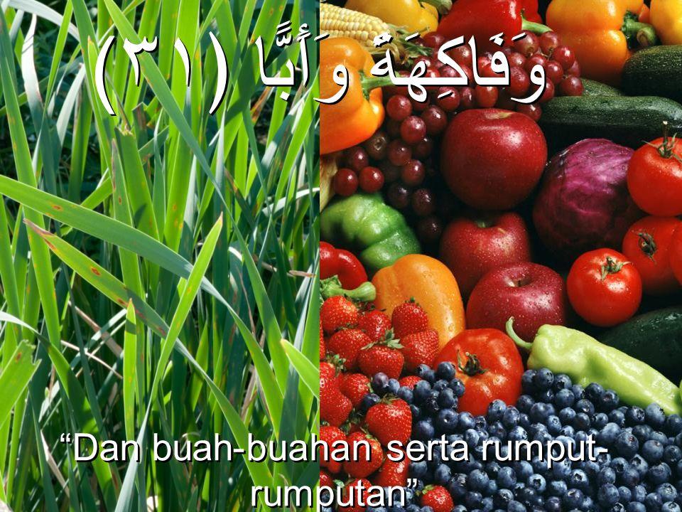 """(وَفَاكِهَةً وَأَبًّا ﴿٣١ """"Dan buah-buahan serta rumput- rumputan"""" (QS. 'Abasa, 80:31) """"Dan buah-buahan serta rumput- rumputan"""" (QS. 'Abasa, 80:31)"""