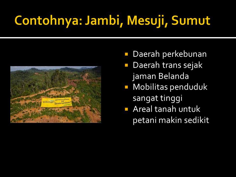  Daerah perkebunan  Daerah trans sejak jaman Belanda  Mobilitas penduduk sangat tinggi  Areal tanah untuk petani makin sedikit