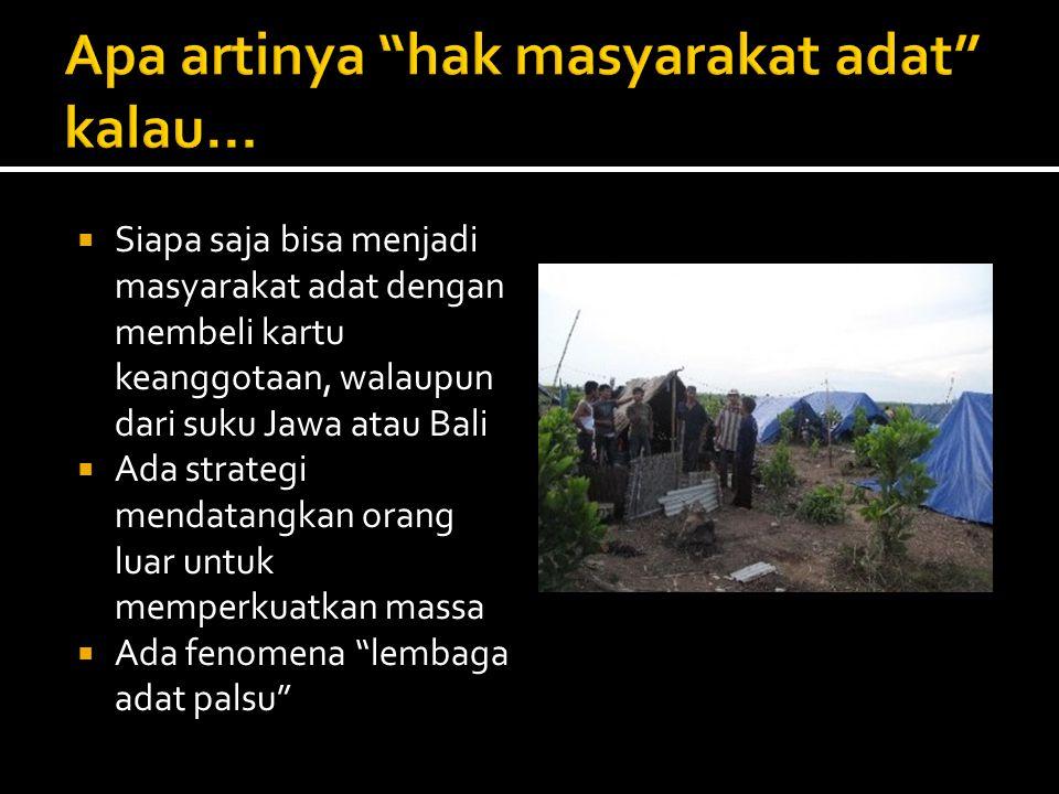  Siapa saja bisa menjadi masyarakat adat dengan membeli kartu keanggotaan, walaupun dari suku Jawa atau Bali  Ada strategi mendatangkan orang luar untuk memperkuatkan massa  Ada fenomena lembaga adat palsu