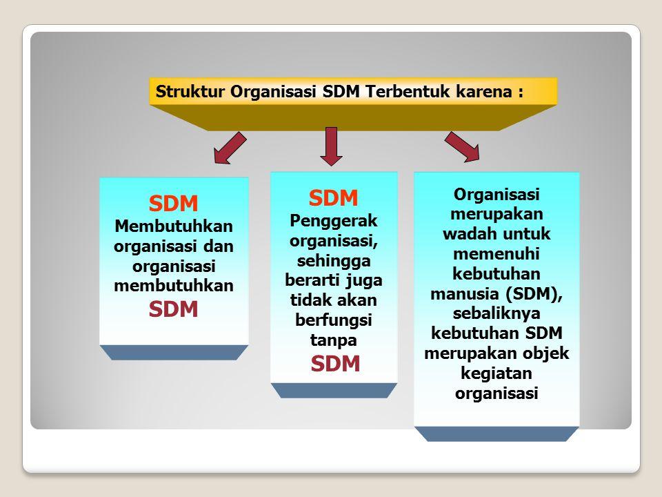 Struktur Organisasi SDM Terbentuk karena : SDM Membutuhkan organisasi dan organisasi membutuhkan SDM SDM Penggerak organisasi, sehingga berarti juga t