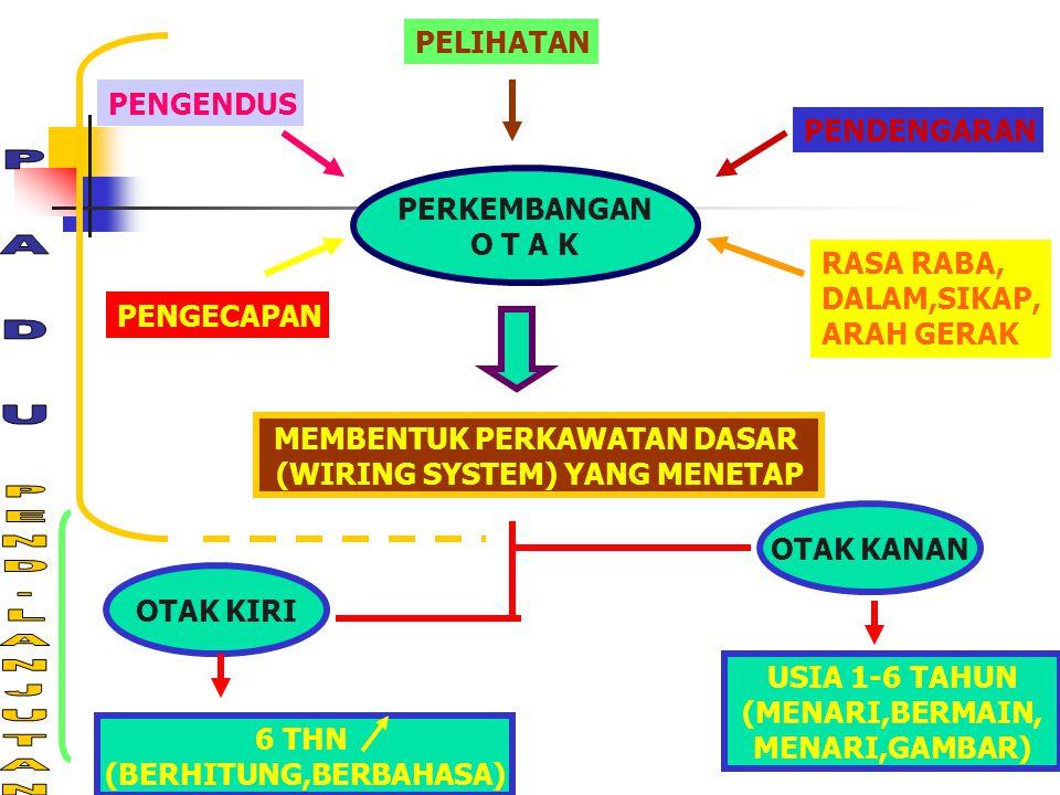 PERKEMBANGAN O T A K MEMBENTUK PERKAWATAN DASAR (WIRING SYSTEM) YANG MENETAP OTAK KANAN USIA 1-6 TAHUN (MENARI,BERMAIN, MENARI,GAMBAR) OTAK KIRI 6 THN