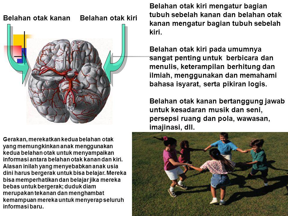 Belahan otak kiri mengatur bagian tubuh sebelah kanan dan belahan otak kanan mengatur bagian tubuh sebelah kiri. Belahan otak kiri pada umumnya sangat