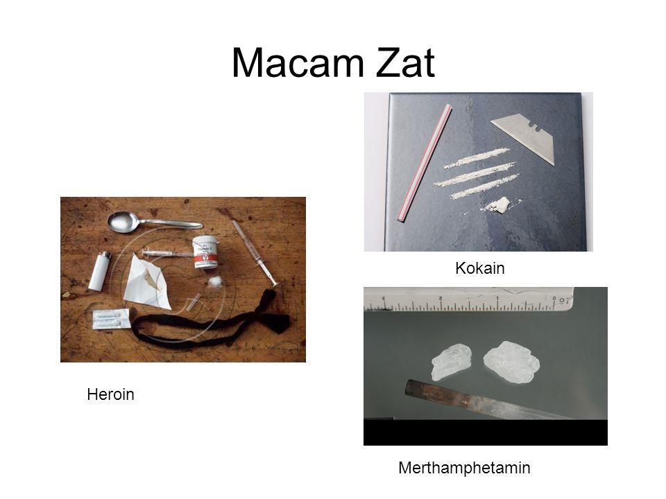 Macam Zat Heroin Merthamphetamin Kokain