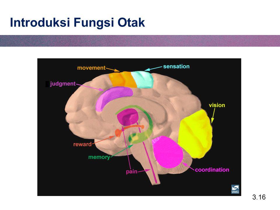 3.16 Introduksi Fungsi Otak