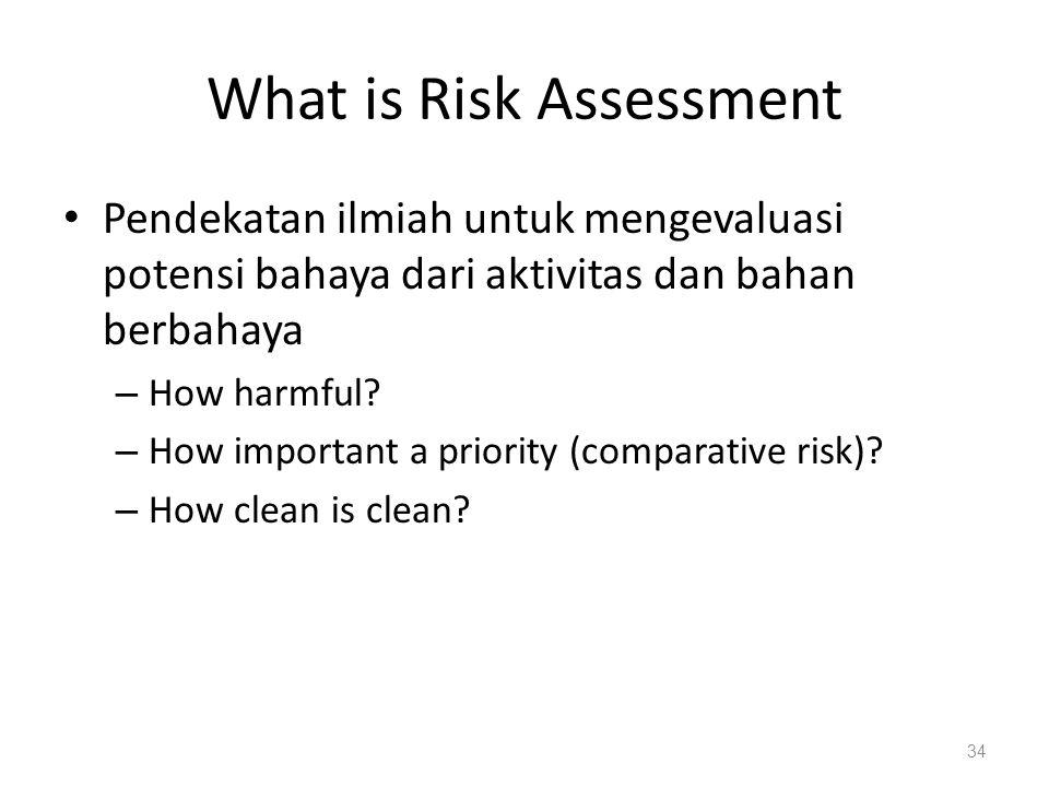 What is Risk Assessment Pendekatan ilmiah untuk mengevaluasi potensi bahaya dari aktivitas dan bahan berbahaya – How harmful? – How important a priori