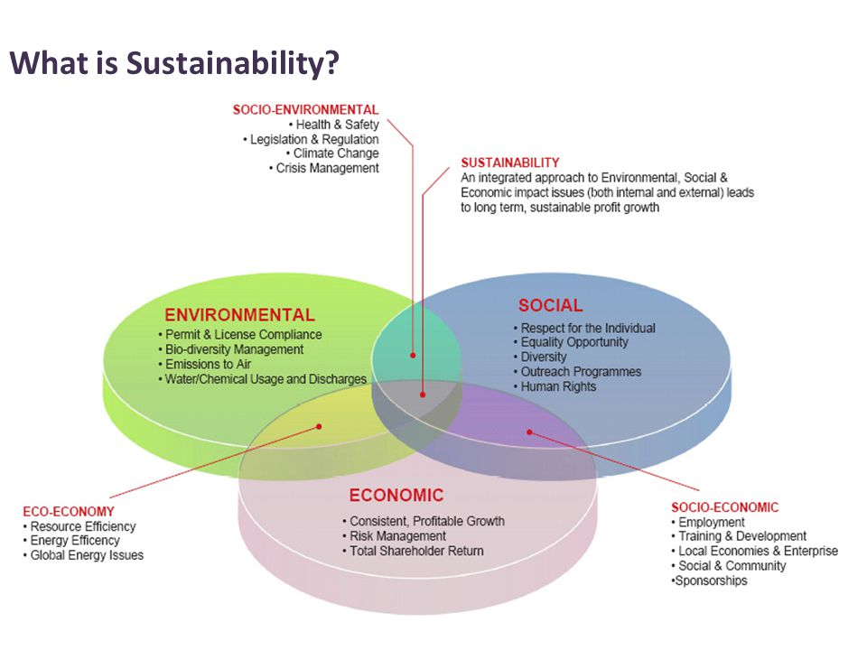 4 What is Sustainability?