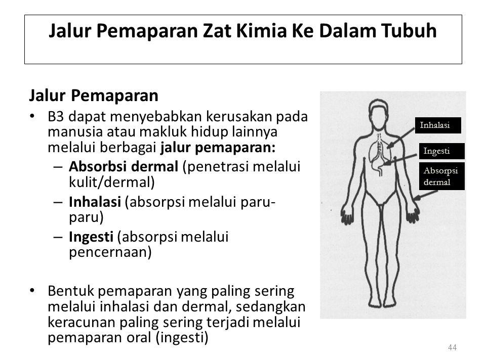 Jalur Pemaparan Zat Kimia Ke Dalam Tubuh Jalur Pemaparan B3 dapat menyebabkan kerusakan pada manusia atau makluk hidup lainnya melalui berbagai jalur pemaparan: – Absorbsi dermal (penetrasi melalui kulit/dermal) – Inhalasi (absorpsi melalui paru- paru) – Ingesti (absorpsi melalui pencernaan) Bentuk pemaparan yang paling sering melalui inhalasi dan dermal, sedangkan keracunan paling sering terjadi melalui pemaparan oral (ingesti) 44 Inhalasi Ingesti Absorpsi dermal