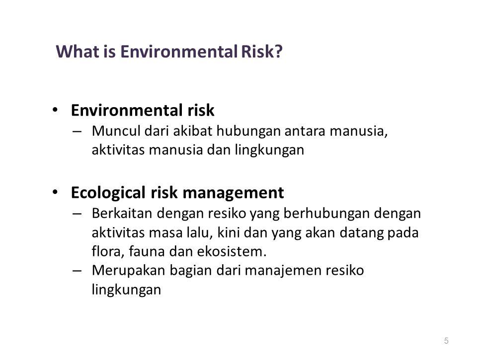 5 What is Environmental Risk? Environmental risk – Muncul dari akibat hubungan antara manusia, aktivitas manusia dan lingkungan Ecological risk manage