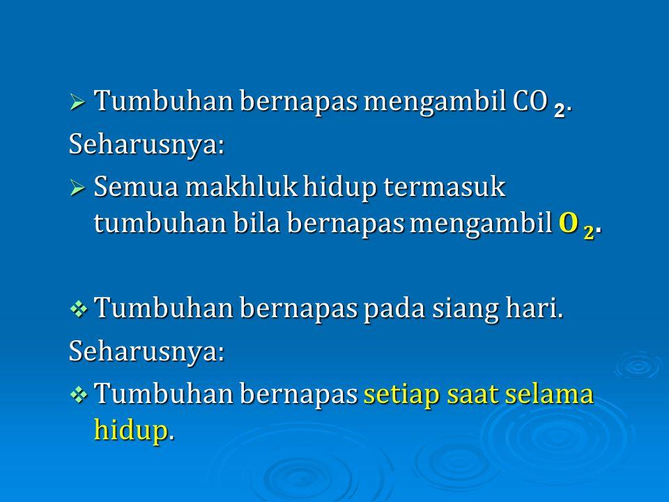  Tumbuhan bernapas mengambil CO 2. Seharusnya:  Semua makhluk hidup termasuk tumbuhan bila bernapas mengambil O 2.  Tumbuhan bernapas pada siang ha