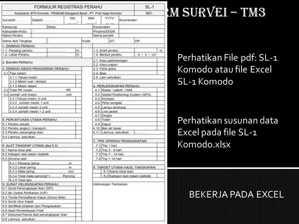Mempersiapkan form SURVEI – TM3 Perhatikan File pdf: SL-1 Komodo atau file Excel SL-1 Komodo Perhatikan susunan data Excel pada file SL-1 Komodo.xlsx