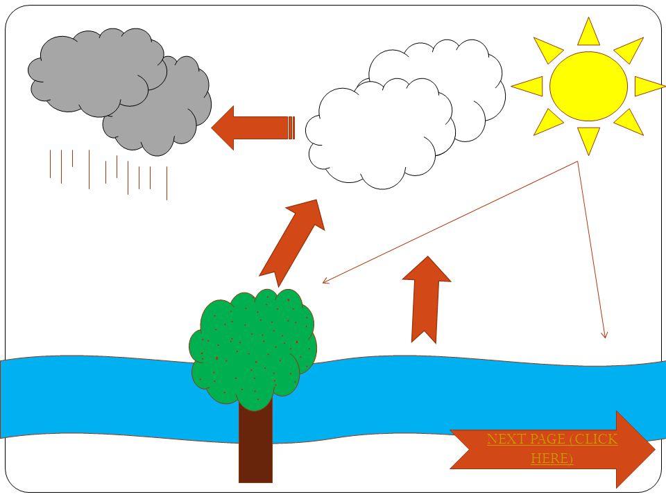 Penjelasan Tentang Daur Air AAir sungai terkena panas matahari dan menguap.