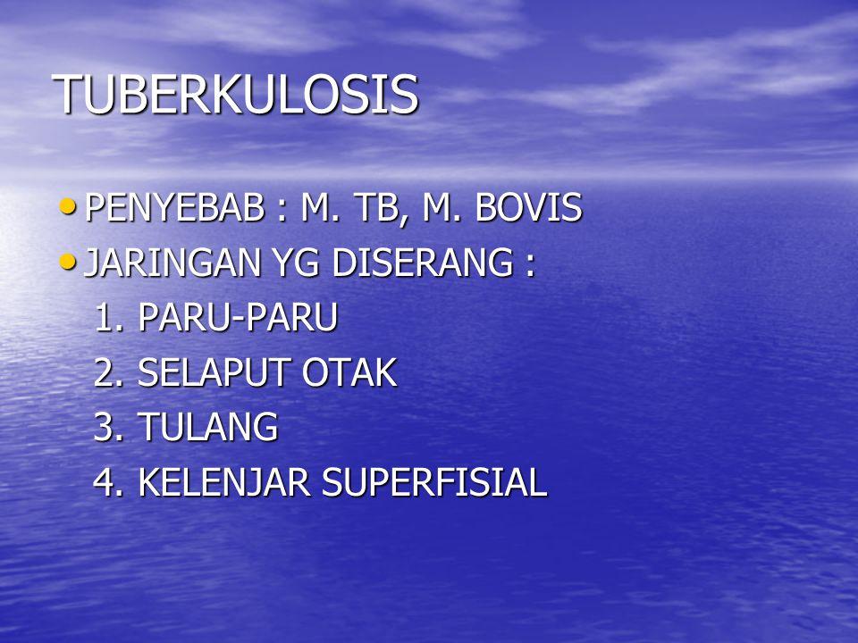 TUBERKULOSIS PENYEBAB : M.TB, M. BOVIS PENYEBAB : M.