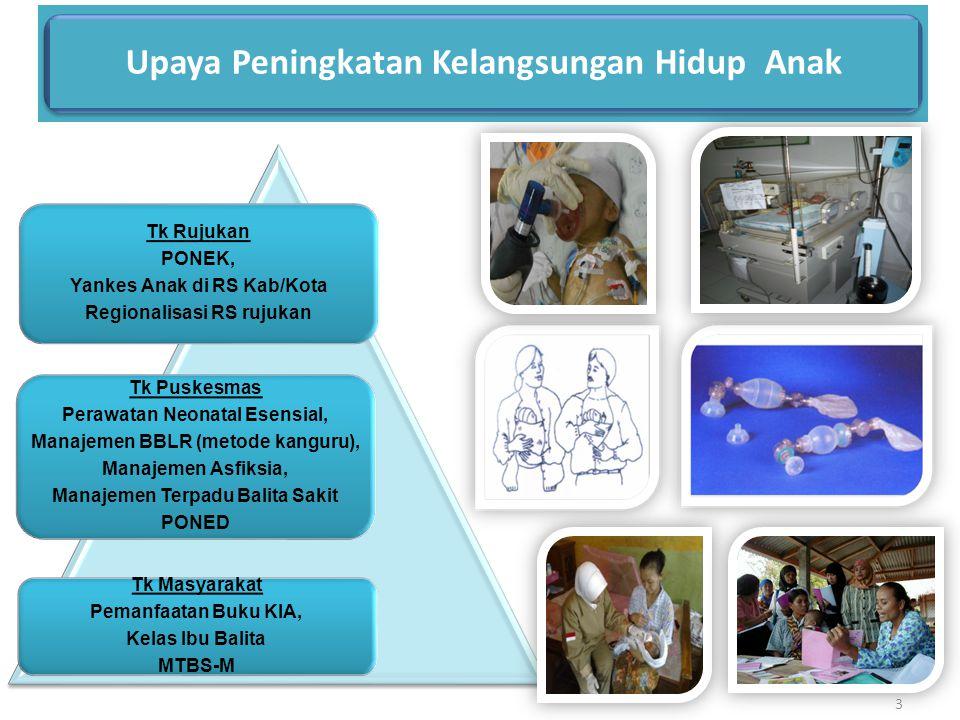 Upaya Peningkatan Kelangsungan Hidup Anak Tk Rujukan PONEK, Yankes Anak di RS Kab/Kota Regionalisasi RS rujukan Tk Puskesmas Perawatan Neonatal Esensi