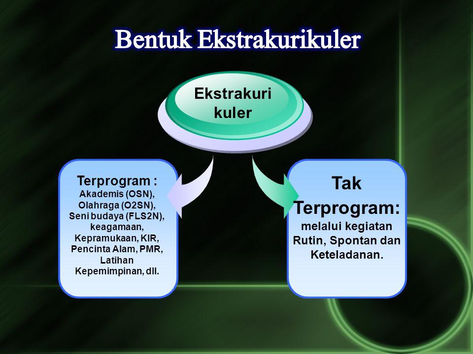 Terprogram : Akademis (OSN), Olahraga (O2SN), Seni budaya (FLS2N), keagamaan, Kepramukaan, KIR, Pencinta Alam, PMR, Latihan Kepemimpinan, dll. Ekstrak