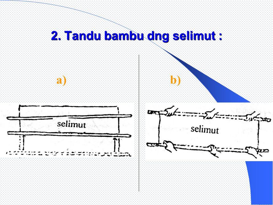 Jenis simpul yg digunakan dlm tandu bambu : Jenis simpul yg digunakan dlm tandu bambu :  Simpul Pangkal  Jangkar