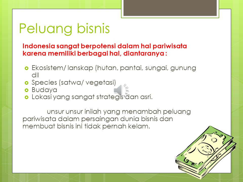 Peluang bisnis Indonesia sangat berpotensi dalam hal pariwisata karena memiliki berbagai hal, diantaranya :  Ekosistem/ lanskap (hutan, pantai, sungai, gunung dll  Species (satwa/ vegetasi)  Budaya  Lokasi yang sangat strategis dan asri.